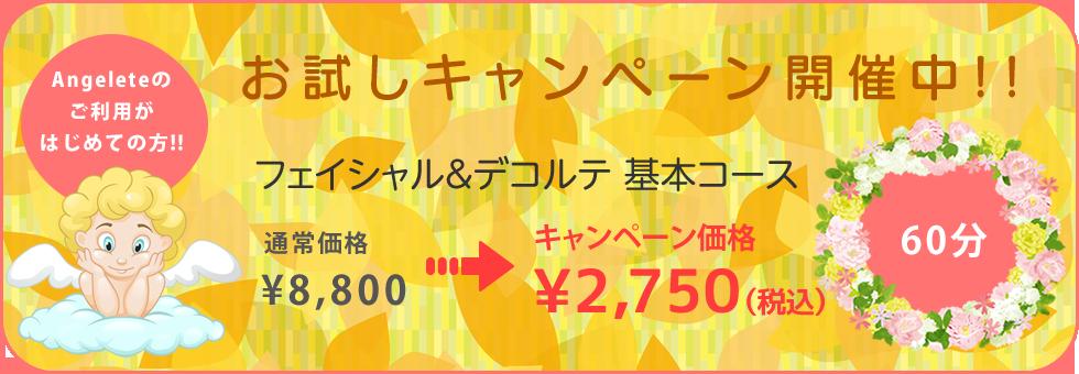 秋のキャンペーン開催中! フェイシャル&デコルテ基本コース通常8,800円がキャンペーン価格3,850円!
